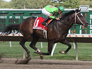 Dabnabit wins the New Jersey Breeders' Handicap.