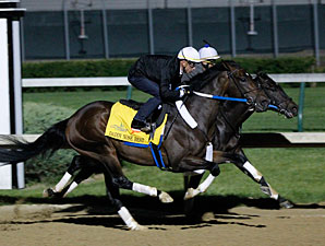 Daddy Nose Best at Churchill Downs 4/23/2012