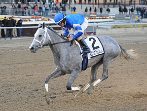 Dance Card wins the 2012 Gazelle.