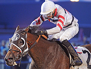 Dancin' Lil wins the 2014 Saylorville Stakes.