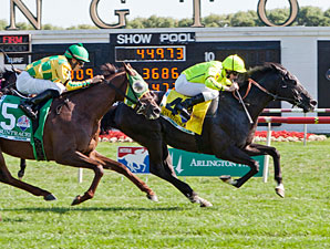 Dandino wins the 2013 American St. Leger.
