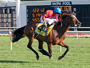 Dank wins the 2013 Beverly D.