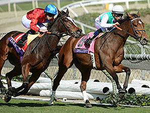 Jockey Ryan Moore and Dank pass Emollient turning into the stretch of the 2013 Breeders Cup Filly & Mare Turf.