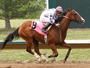 Danzip wins the 2010 Aspen.