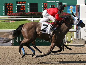 Daphne Angela wins the 2010 Crescent City Oaks.