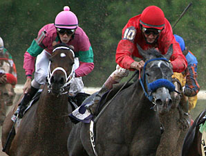 Daphne Angela wins the 2011 LA Cup Filly & Mare.