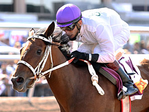 Dashkova in the New Mexico Breeders Oaks.