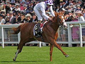 Dawn Approach wins at Royal Ascot.