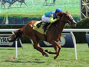 Dayatthespa wins the 2013 Yaddo Stakes.