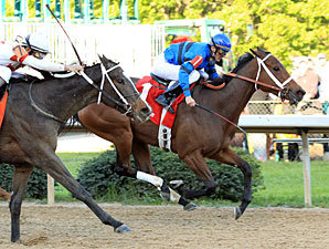 Decelerator wins the 2010 Instant Racing Stakes.