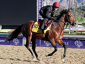 Declaration of War works 10/31/2013.