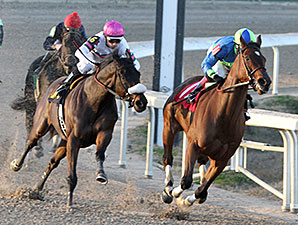 Delaunay wins the 2014 F. W. Gaudin Memorial.