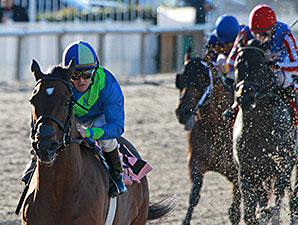 Delaunay wins the 2014 Thanksgiving Handicap.