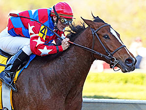 Delta Flower wins the 2014 Rainbow Miss.