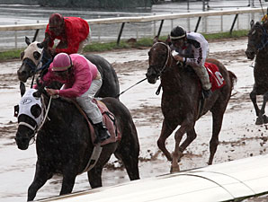 8-1-09	Deltalicous wins the LA Cup Juvenile Fillies at Louisiana Downs with Don Simington aboard.