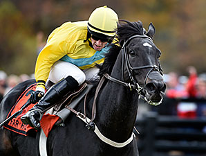Demonstrative wins the 2014 Grand National at Fair Hills.