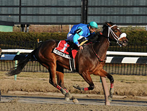 Deputy Daney wins the 2010 Jimmy Winkfield.