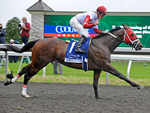 Derby Kitten wins the 2011 Coolmore Lexington.