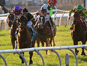 Desert Wheat wins the 2009 LA Champions Day Turf.