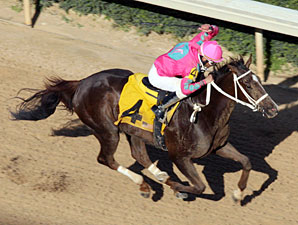 Devil And A Half winning The Arkansas Breeders' Stakes.