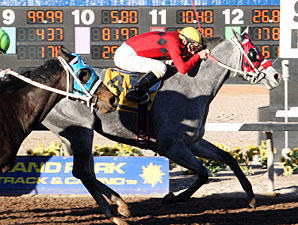 Devons Ca Ching wins the 2013 Pepsi Cola Stakes.
