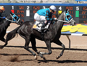Diabolical Dame wins the 2014 Copper Futurity Trail Fillies 1st Division Trial.