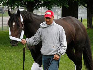 Dialed In leaves for Pimlico on May 18, 2011.