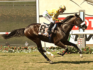 Diamond Bachelor wins the Oak Tree Juvenile Turf.