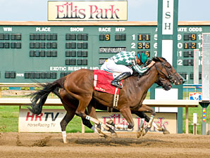 Direct Line wins the 2010 Gardenia.