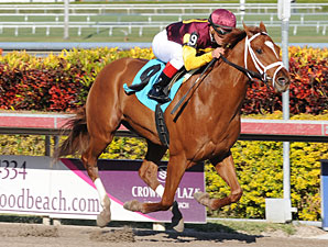 Discreet Dancer Allowance Win, January 7, 2012.