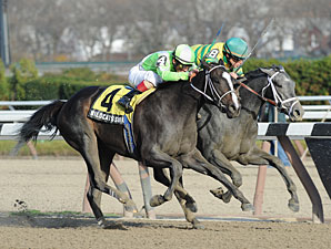Disposablepleasure wins the 2011 Demoiselle.