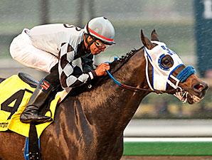 Distinctiv Passion wins the Joe Hernandez Stakes.