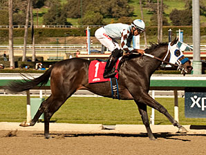 Distinctiv Passion wins the San Pedro Stakes.