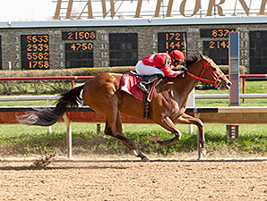 Diva's Diamond wins the 2014 Peach of It Handicap.