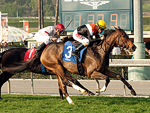 Diversy Harbor wins the Buena Vista Stakes.