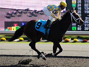 Dixie Strike wins the 2011 Ontario Lassie.