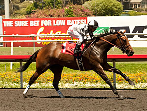 Doinghardtimeagain wins the 2013 Hollywood Oaks.
