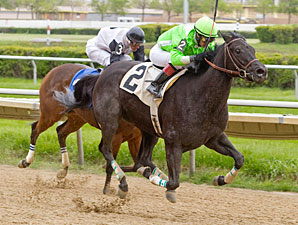 Dolly Peach wins the 2012 Pretty Jenny Stakes.