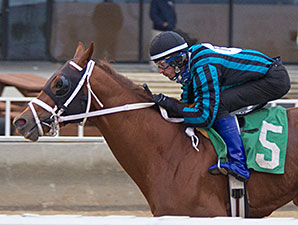 Dom the Bomb wins the 2014 Sun Power Stakes.