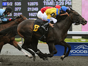 Don's Folly wins the 2010 Kenora Stakes.