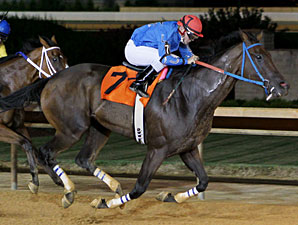 Down Town Allen wins the 2013 Sadie Hawkins Stakes.