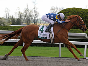 Dr. Zic wins the 2010 Vinery Madison.