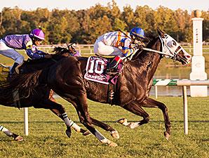 Dreamsgonewild wins the 2014 Laurel Dash.