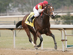 Dryfly wins the 2010 Smarty Jones.
