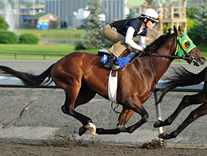 D's Wando at Woodbine on June 29, 2010.