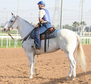 Scott Blasi, assistant to Steve Asmussen, on the pony Pancho. (Photo Credit: Michele MacDonald)