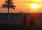 Dubai World Cup: Training March 29, 2013
