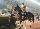 Dubai World Cup: Dubai Sheema Classic