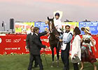 Dubai World Cup: UAE Derby