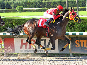 Ducduc wins the 2012 Our Dear Peggy Stakes.